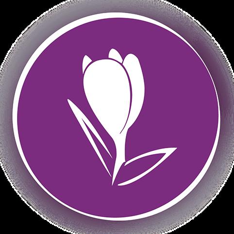 projekt-kwiaciarnia-krokus-2