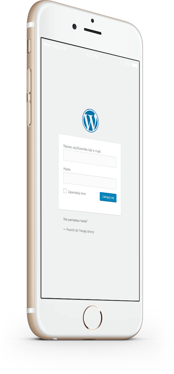 wordpress-developer-phone-2-2