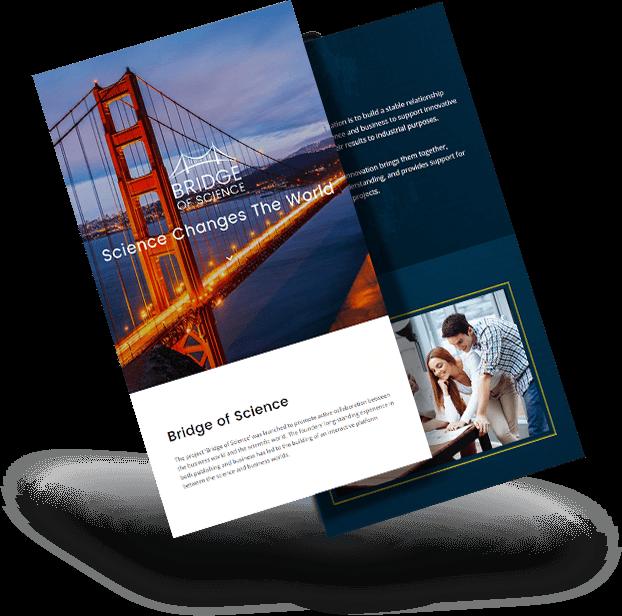 wordpress-developer-websites-3